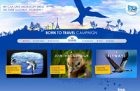 Click here to visit the: http://www.borntotravelcampaign.com