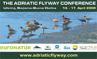Poster of the 1st Adriatic Flyway Conference