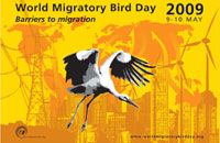 World Migratory Bird Day (WMBD) Poster 2009