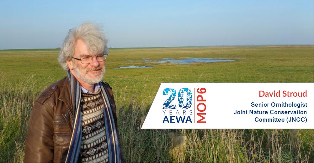 People behind AEWA - David Stroud