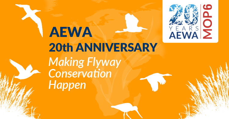20th Anniversary of AEWA - Making Flyway Conservation Happen