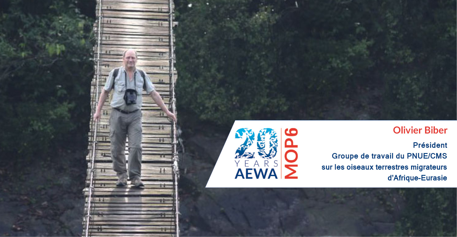 Olivier Biber, Président, Groupe de travail du PNUE/CMS  sur les oiseaux terrestres migrateurs  d'Afrique-Eurasie