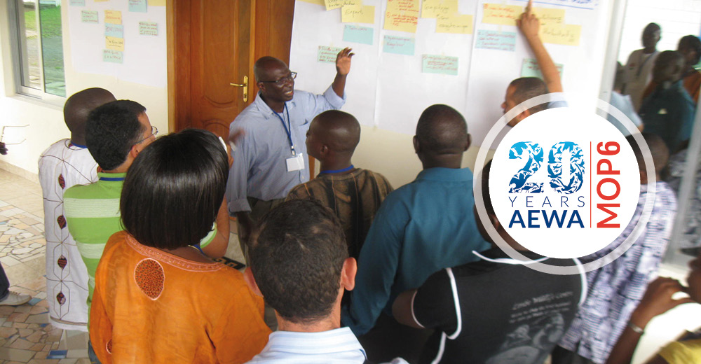 Big Plans for Africa: A Round of Questions and Answers from AEWA Experts