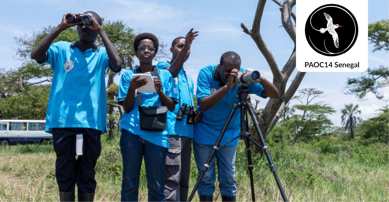 Ornithologues en Afrique © Szabolcs Nagy