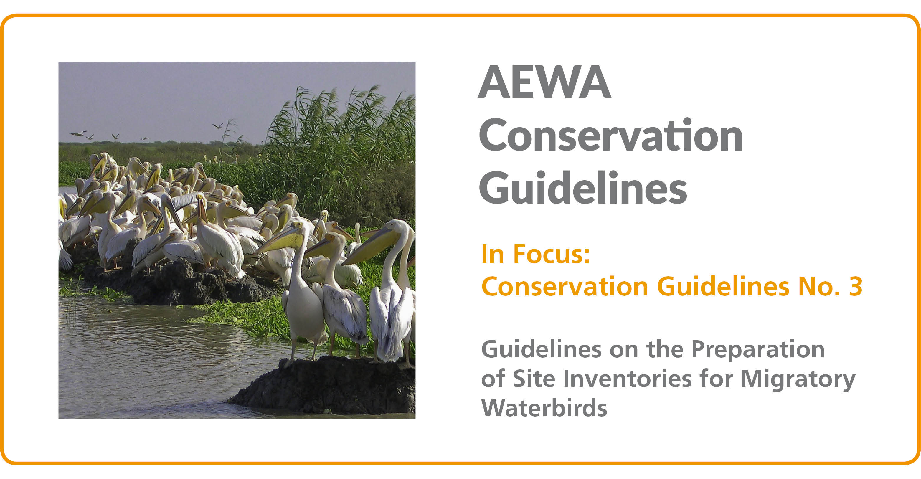 In Focus: AEWA Conservation Guideline No. 3 - Guidelines on the Preparation of Site Inventories for Migratory Waterbirds