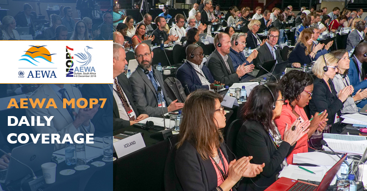 Delegates in the plenary during the last day of MOP7 in Durban, South Africa - © Aydin Bahramlouian