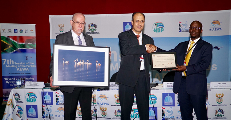 AEWA Conservation Award Presented to Egyptian Environmental Affairs Agency