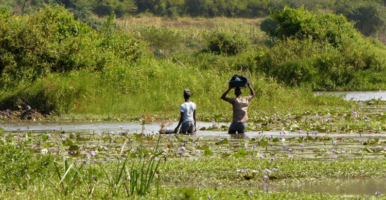 Zone humide africaine © Jacques Trouvilliez