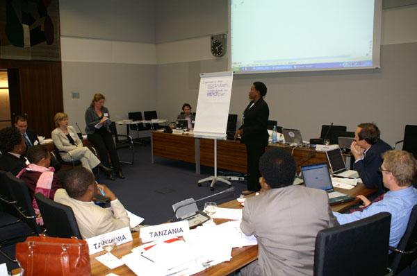 Miriam Zacharia addressing other delegates during a workshop at AEWA StC4 in Bonn, Germany