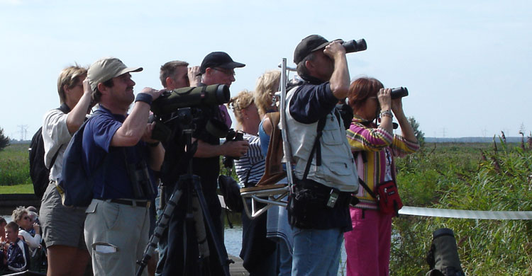 Birdwatching Tourism © Sergey Dereliev, www.dereliev-photography.com