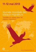 L'affiche Journée mondiale des oiseaux migrateurs 2013