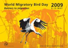 WMBD Poster 2009