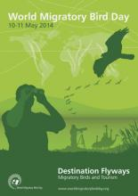 World Migratory Bird Day Poster 2014