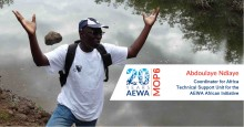 Abdoulaye Ndiaye, Coordinator for Africa, Technical Support Unit for the AEWA African Initiative
