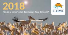 Pélican blanc (Pelecanus onocrotalus) dans le parc national du Djoudj, au Sénégal © Sergey Dereliev, www.dereliev-photography.com