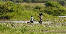 African wetland scene © Jacques Trouvilliez