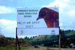 A bill board bearing the picture of the White-winged Flufftail and a message to protect it was placed on a roadside in Berga © EWNHS