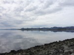 On the causeway to Tautra Island overlooking the Trondheimsfjord © Nina Mikander