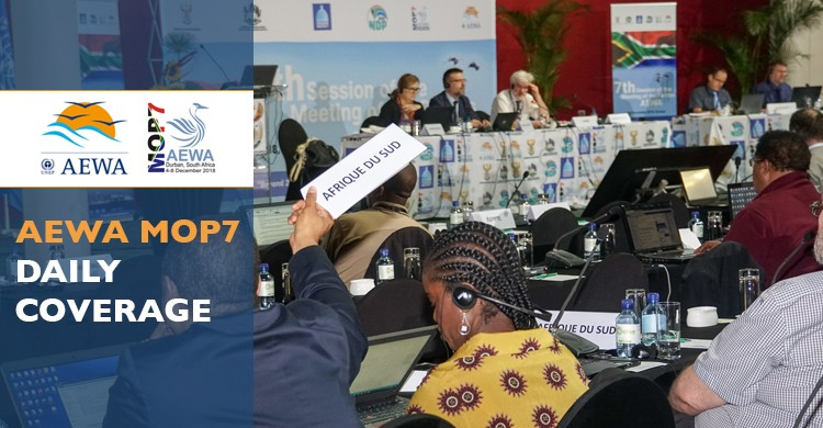 Delegates in the plenary during the third day of MOP7 in Durban, South Africa - © Aydin Bahramlouian