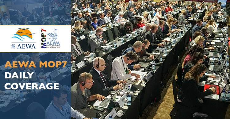 Delegates in the plenary during the second day of MOP7 in Durban, South Africa - © Aydin Bahramlouian