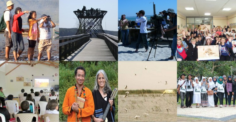 Impressions of World Migratory Bird Day 2016