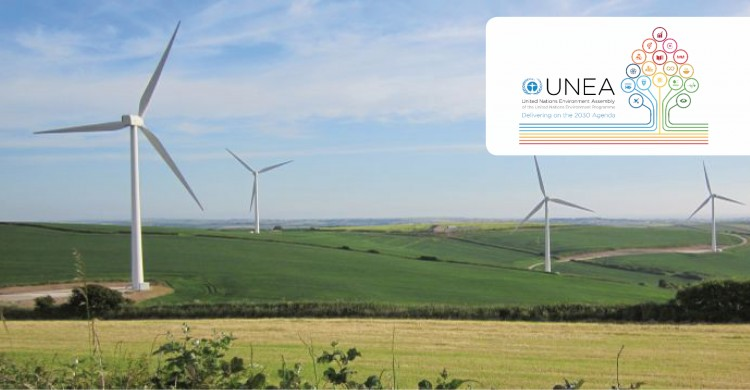 Wind farm in the UK © Robert Vagg UNEP/CMS