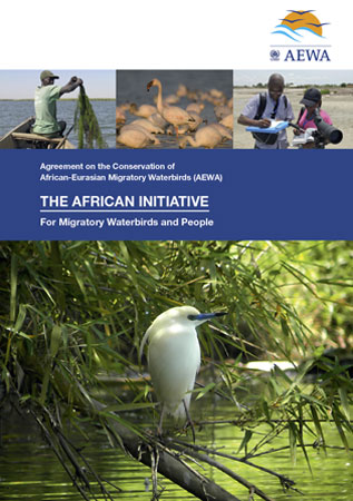 The African Initiative brochure