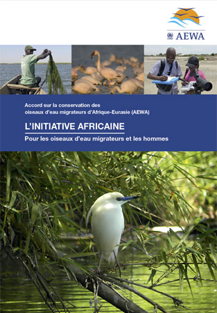Brochure sur l'Initiative africaine