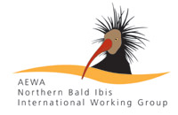Northern Bald Ibis  IWG logo